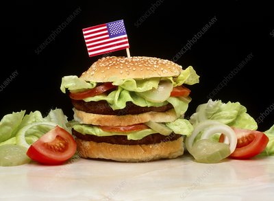 Double hamburger with American flag