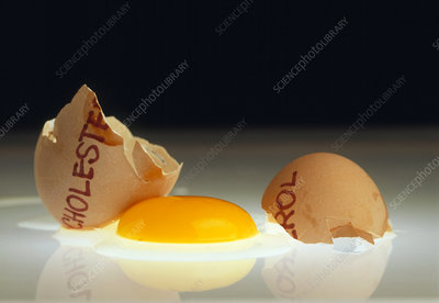 Cracked egg as symbol of cholesterol rich food