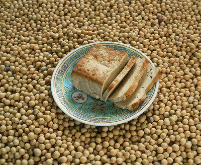 Soya beans and tofu