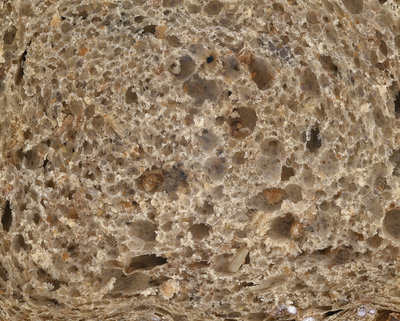 Wholewheat bread