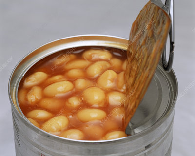 Baked beans in a tin