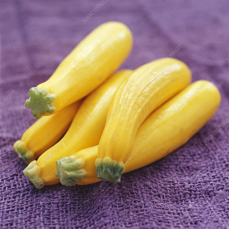 how to cook yellow courgette