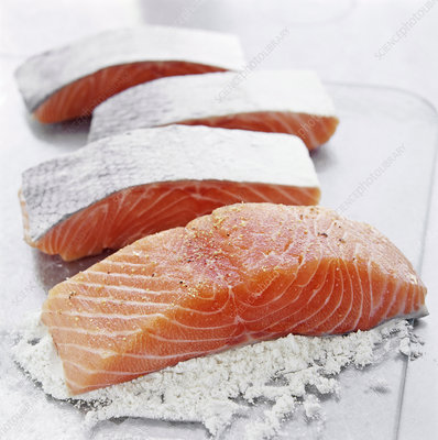 Flouring salmon fillets
