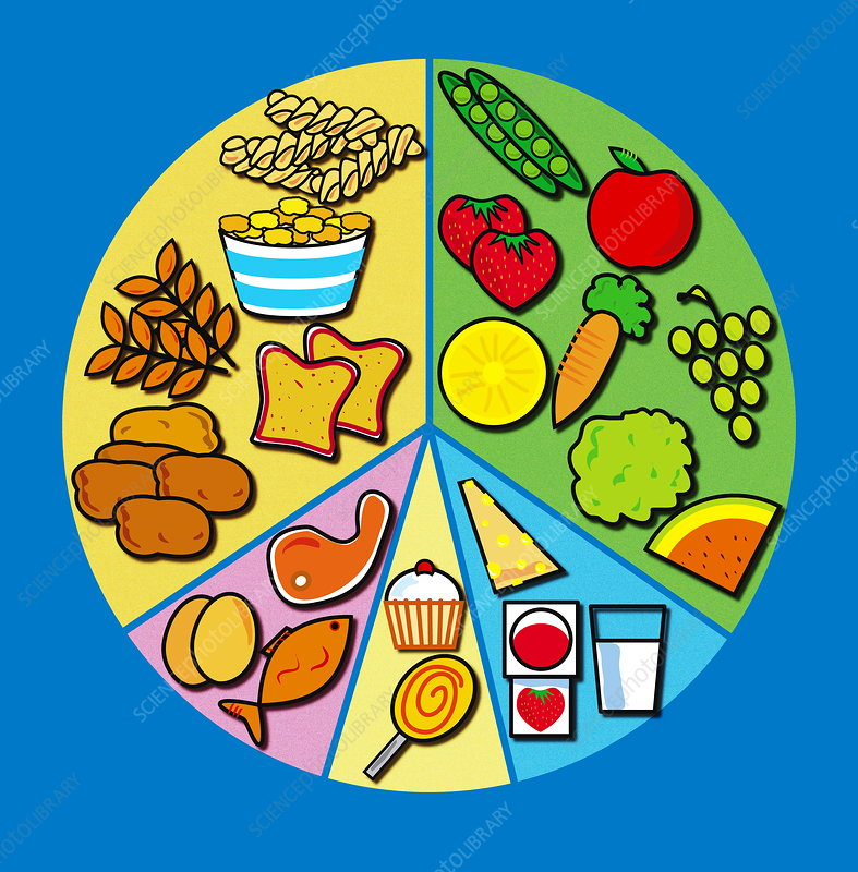 Balanced Diet Stock Image H1102734 Science Photo Library