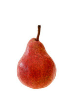 Pear 'Red Williams'