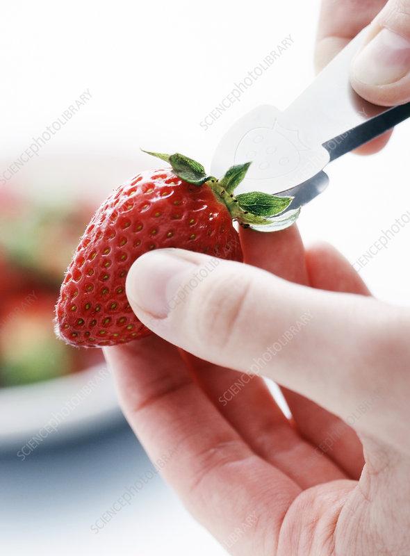 Strawberry preparation
