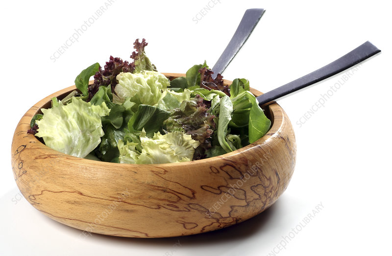 Green leaf salad