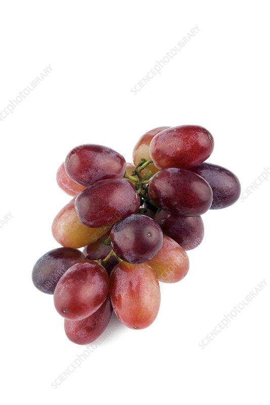 Small bunch of grapes