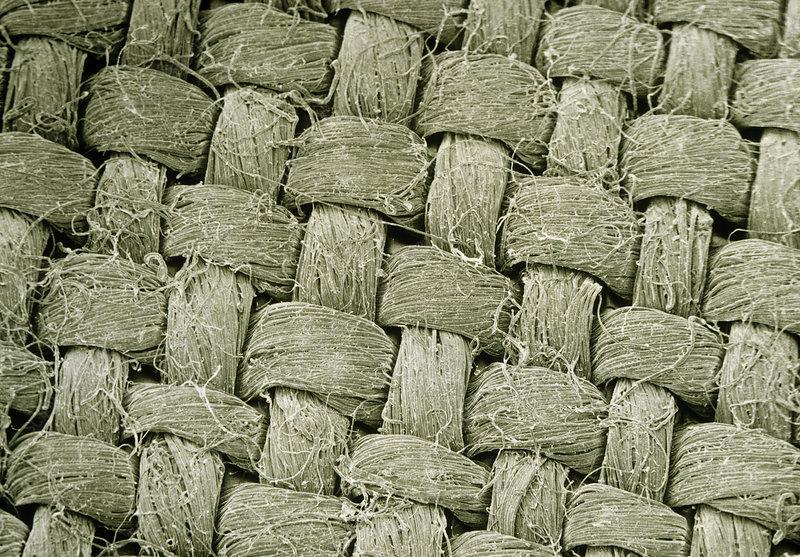 SEM of linen weave