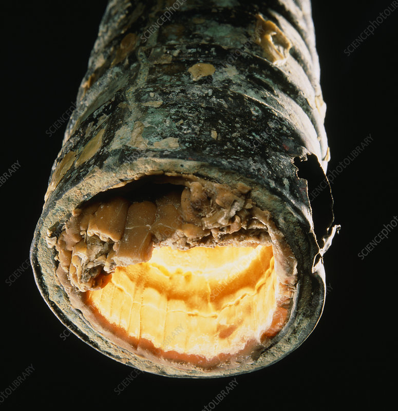 Limescale (calcium deposit) inside metal pipe