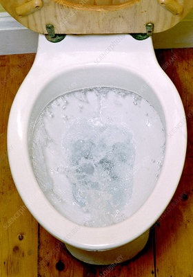 Toilet being flushed