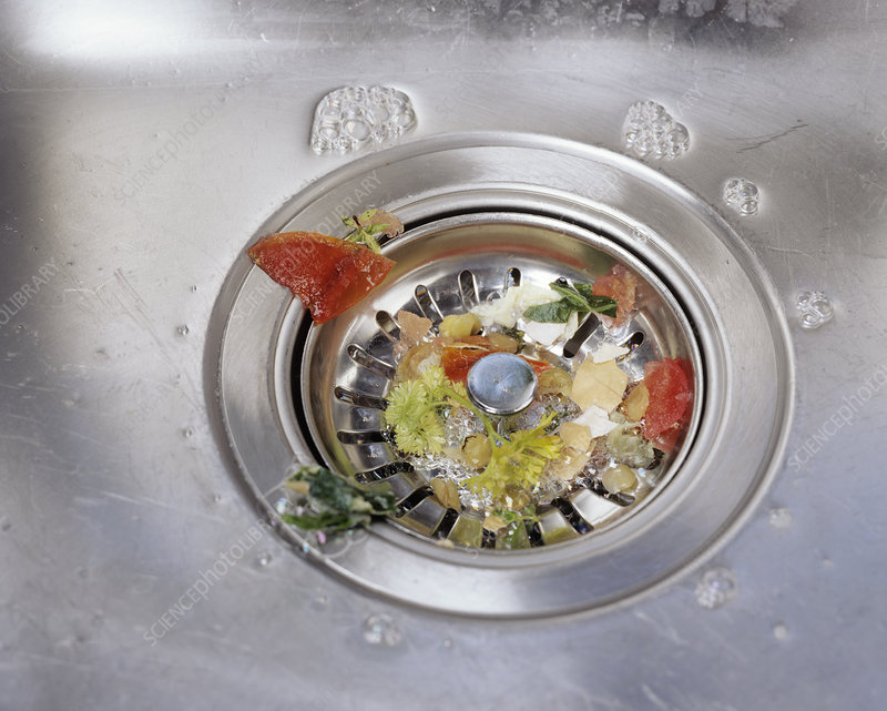 Plughole food trap
