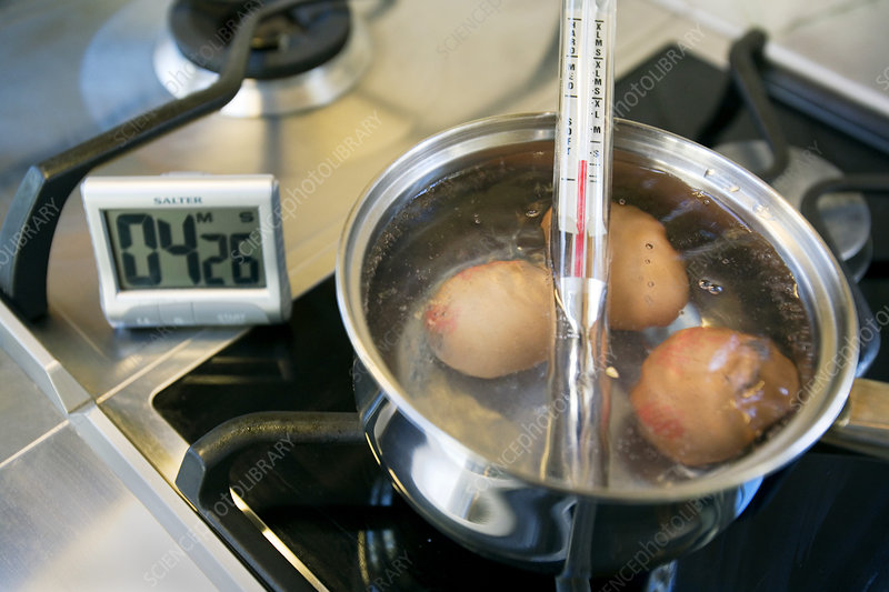 Egg timer and boiling eggs