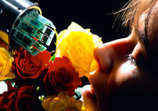 Human and electronic NOSE smelling roses