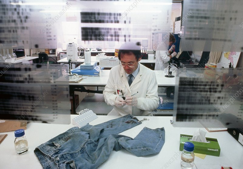 Examining clothing in forensic laboratory