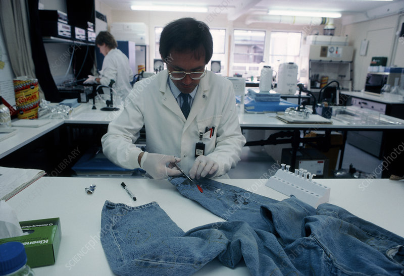Forensic scientist taking blood sample from jeans