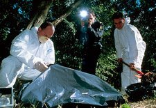 Forensics team examine crime scene in a forest