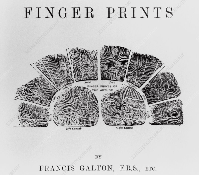 Early fingerprinting