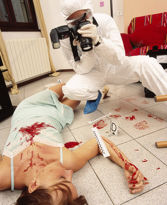 Photographing crime scene