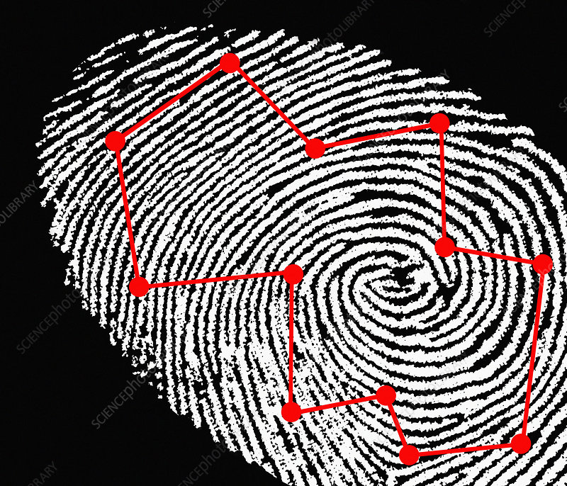 library caption fingerprint scanning computer artwork of a fingerprint