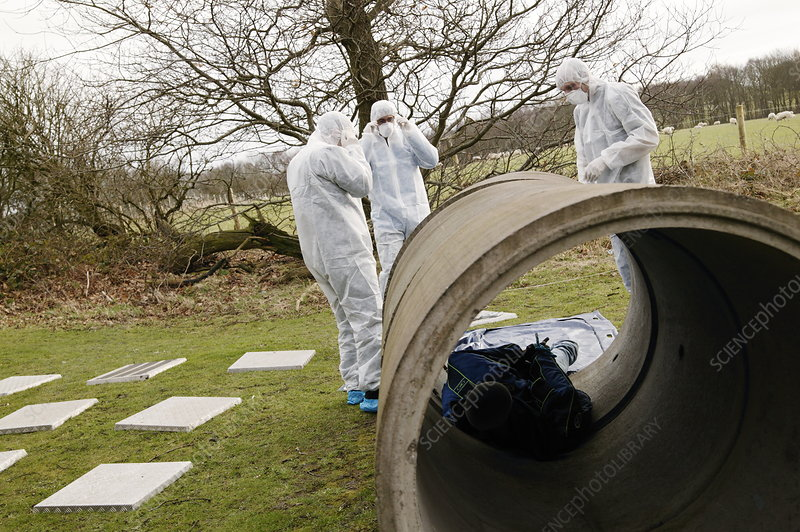 Forensic training