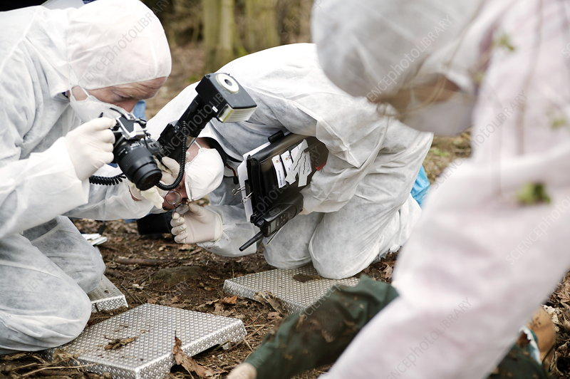 how to become a forensic crime scene investigator