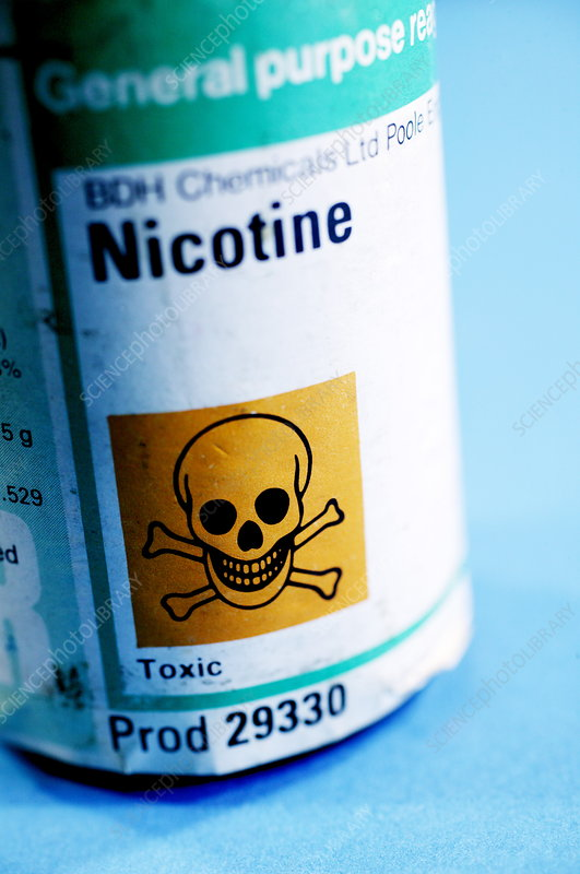 Nicotine for forensic research