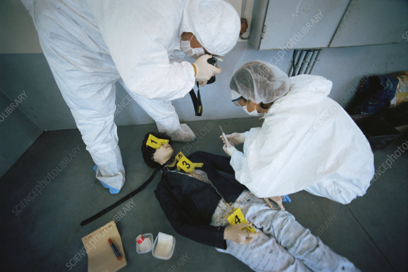 Forensics officers on a training exercise