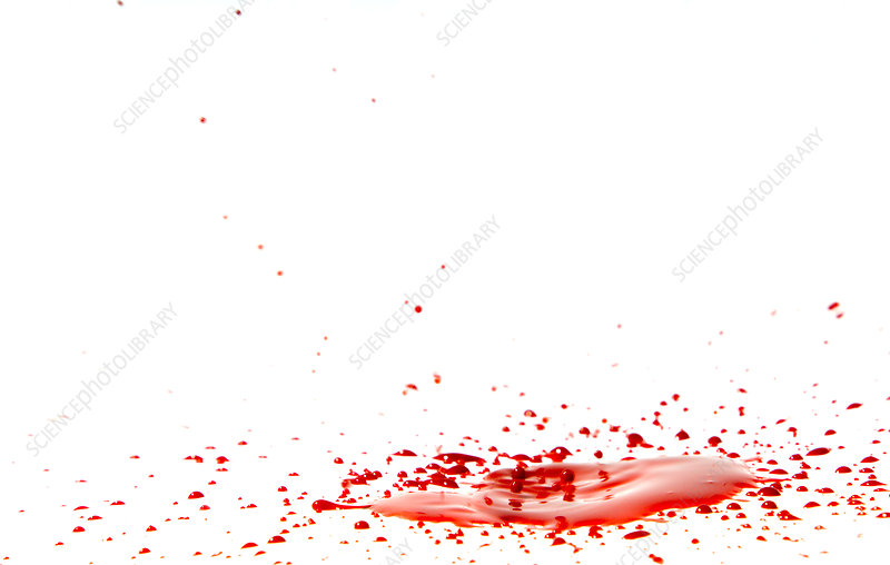 Blood Spatter Analysis Stock Image H200 0634 Science Photo Library