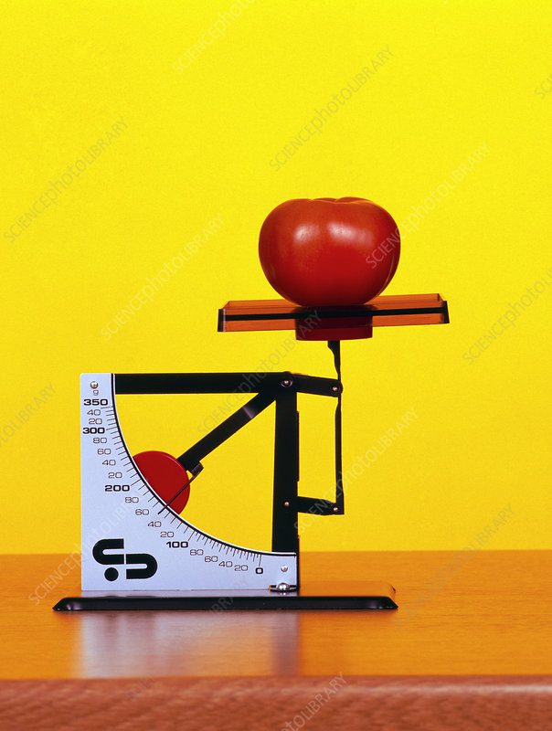 Tomato on a set of weighing scales