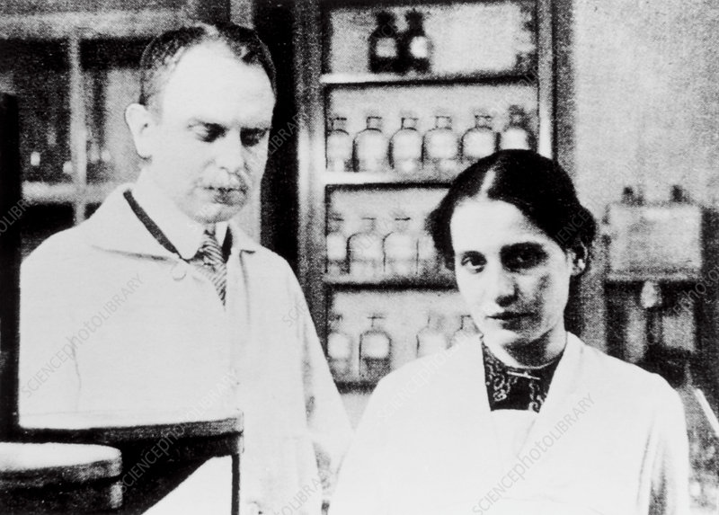 Hahn and Meitner, German chemists