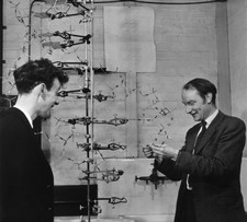 Crick & Watson with their DNA model in 1953