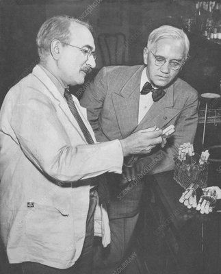 Dr. Waksman and Sir Fleming