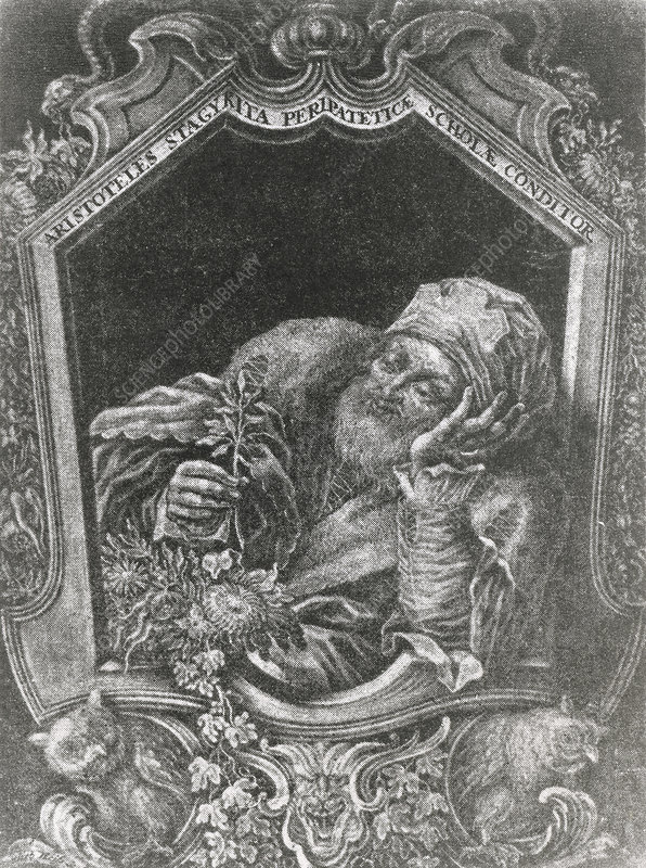 Engraving of Aristotle