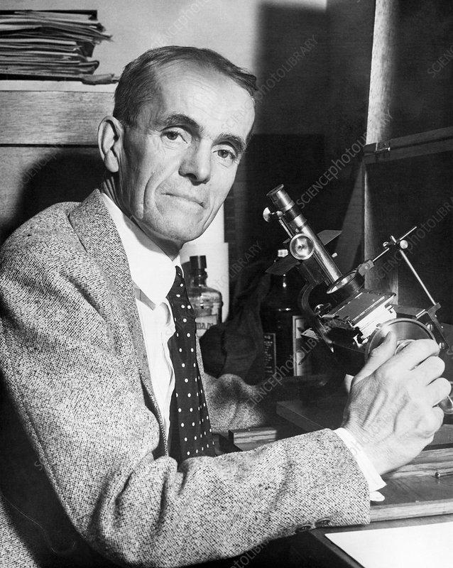 Walter Adams, US astronomer