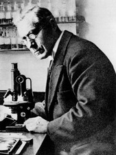 Martinus Beijerinck, Dutch discoverer of viruses