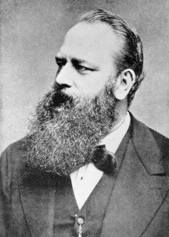 Theodor Billroth, Austrian surgeon