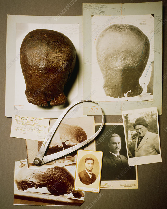 Eugene Dubois and his hominid fossil find