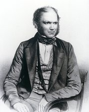 Lithograph of Charles Darwin aged 40