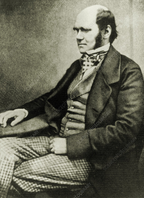 Charles Darwin aged about 50