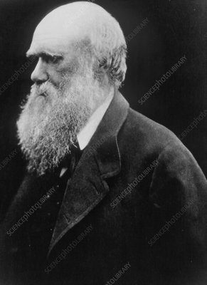 Charles Darwin as an old man