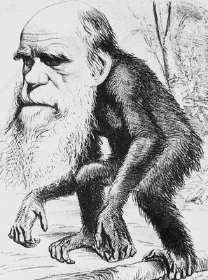 Caricature of Charles Darwin and natural selection