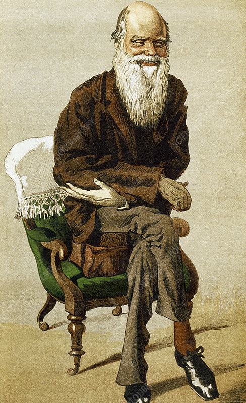 Caricature of Charles Darwin, British naturalist