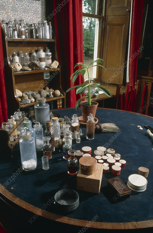 Chemicals and rock samples in Darwin's study