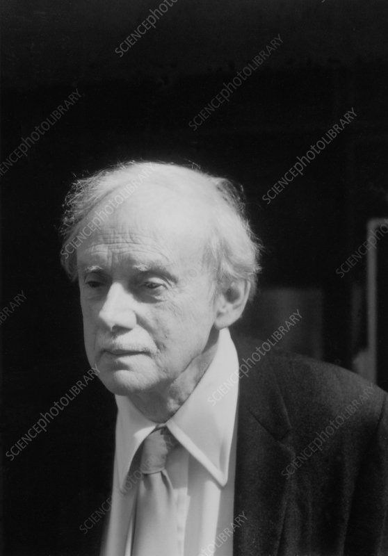 Paul Dirac - Stock Image - H404/0257 - Science Photo Library