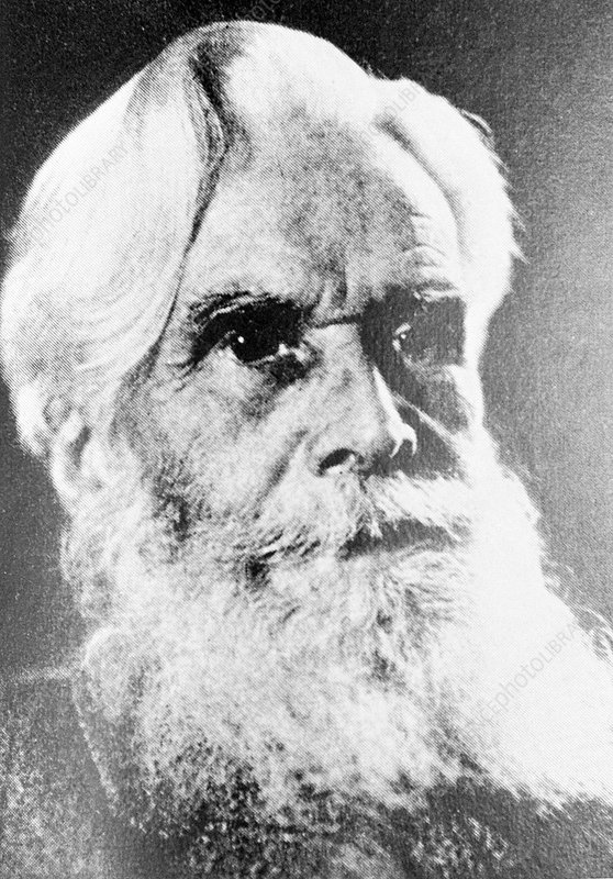 Henry Havelock Ellis, sexologist