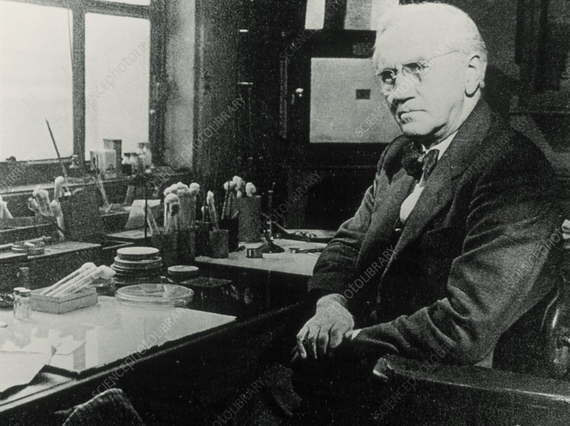 Sir Alexander Fleming in his lab.