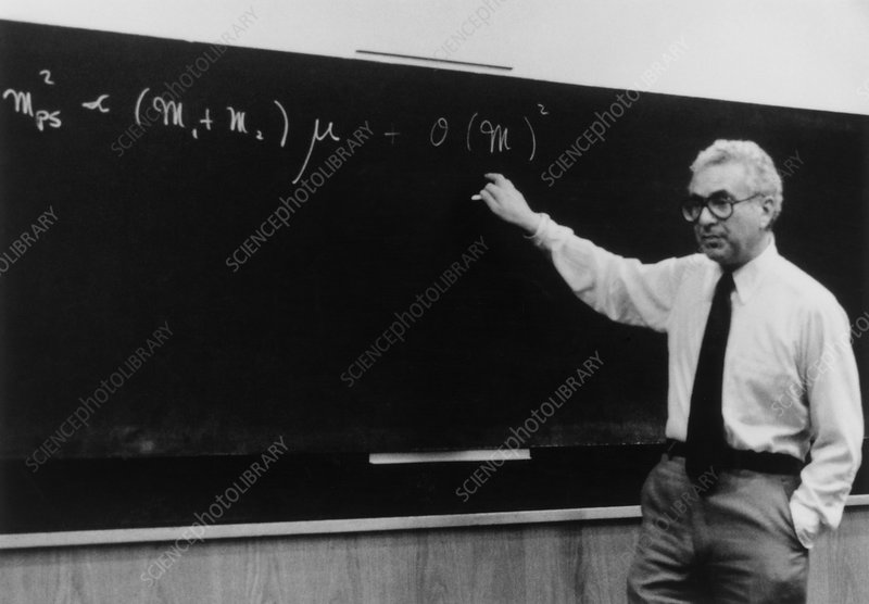 Murray Gell-Mann at CERN, 1979