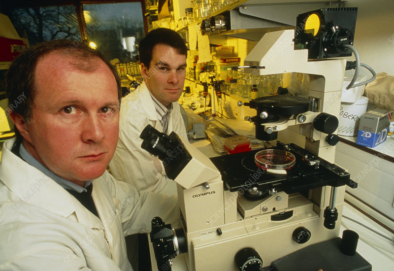 Gene therapy researchers: Drs I. Hart & R. Vile