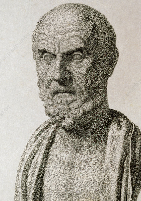 Engraving of Classical Greek bust of Hippocrates